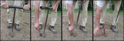Plantation Traditionnel à la main