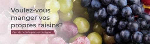 manger vos propes raisins