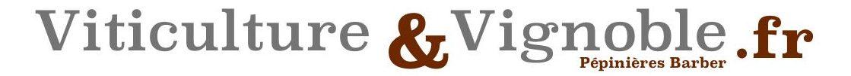 ▷ Viticulture et Vignoble ® Guide Complet sur la Viticulture et la Vinification