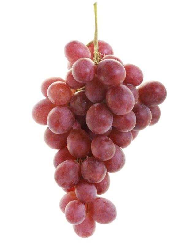 Red globe vari t de raisin de table Planter vigne raisin de table
