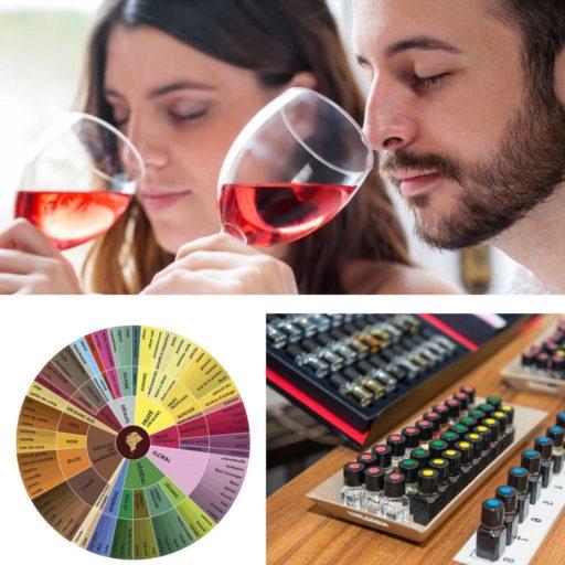 Arômes du vin. Classification des arômes