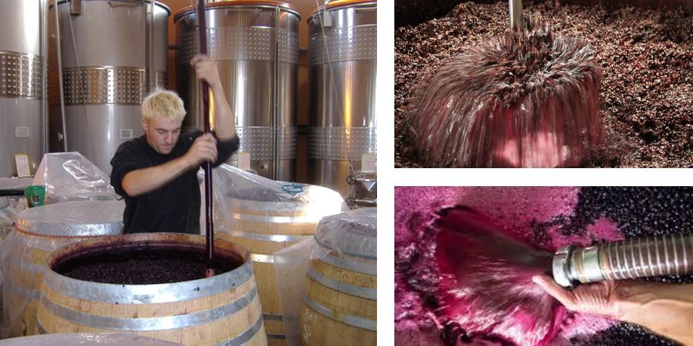 Pigeage Vinification Vin Rouge